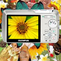 Get in on the action with a Olympus µ 740 & 750 - Digital cameras, digital camera reviews, photography views and news news