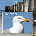 Olympus SP-565 UZ offers 20x wide optical zoom - Digital cameras, digital camera reviews, photography views and news news