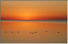 Geeseon Lake Ontario - Copyright © 2007 by Melagoo