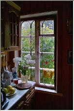 Window - Copyright © 2008 by tulaev
