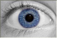 Eye, Eye! - Copyright © 2007 by pepsoft