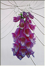 Broken glass - Copyright © 2008 by Petronella