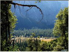 Little View Into Paradise (Yosemite NP) 01 - Copyright © 2008 by izaak p slagt