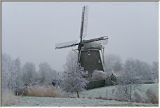 winter - Copyright © 2008 by Tom Elst
