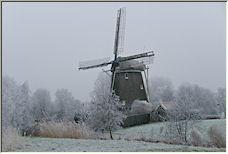 winter - Copyright © 2008 by Tom Elst