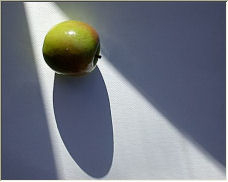 Shadows - Copyright © 2006 by Stregoica Photography