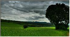 countryside - Copyright © 2006 by Jesús Daniel Martínez Alday