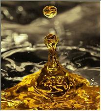 Liquid Gold - Copyright © 2006 by Davina Brown