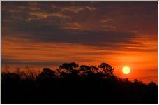 Sunrise - Copyright © 2006 by SUE OBRIEN
