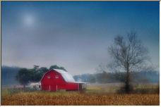 Misty Morning - Copyright © 2006 by Allen Conrad