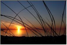 As the Sun Sets - Copyright © 2006 by Julie Christiansen