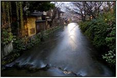 Gion Shirokawa - Copyright © 2006 by Tracey Taylor