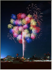 Fireworks Bouquet - Copyright © 2006 by Tracey Taylor