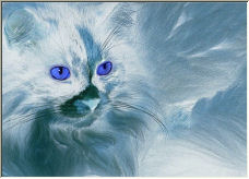 Blue Cat - Copyright © 2006 by Shirley Cross