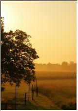 Morning - Copyright © 2006 by A Hensen