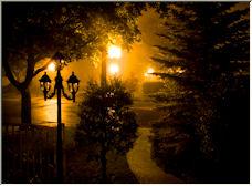 Fog - Copyright © 2008 by Kimba