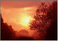 my first Sunrise - Copyright © 2006 by Shirley Cross