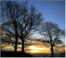 Winter sunset - Copyright © 2006 by dean lawton