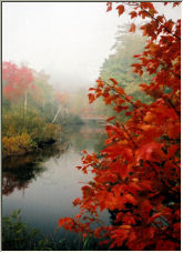 Autumn Pastel - Copyright © 2007 by Crystal