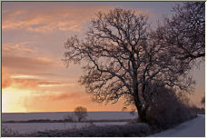 winter morning - Copyright © 2007 by visible