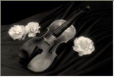 Violin with Roses - Copyright © 2007 by Shirley D. Cross