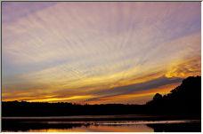 Dawn with Ducks - Copyright © 2007 by EddieF