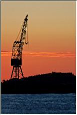 Cranes II - Copyright © 2007 by Alexto